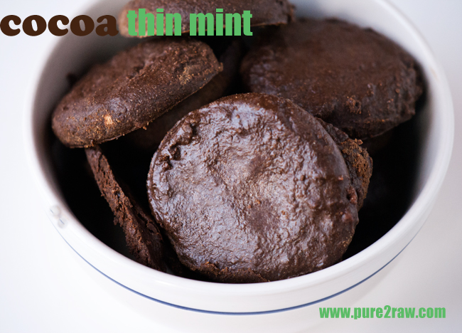 raw no sugar protein thin mint cookies