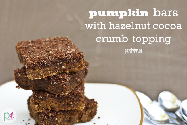 pumpkin protein bars with hazelnut cocoa crumb topping