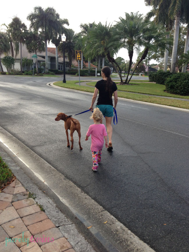 joy walking jax