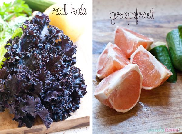 close-up-ingredients