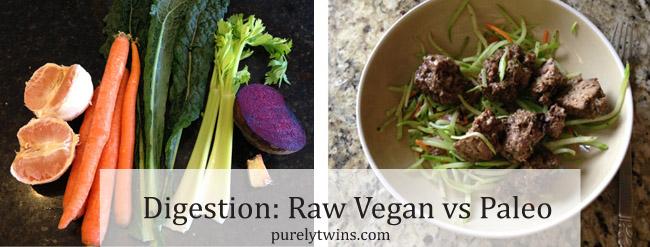 raw vegan vs paleo purelytwins