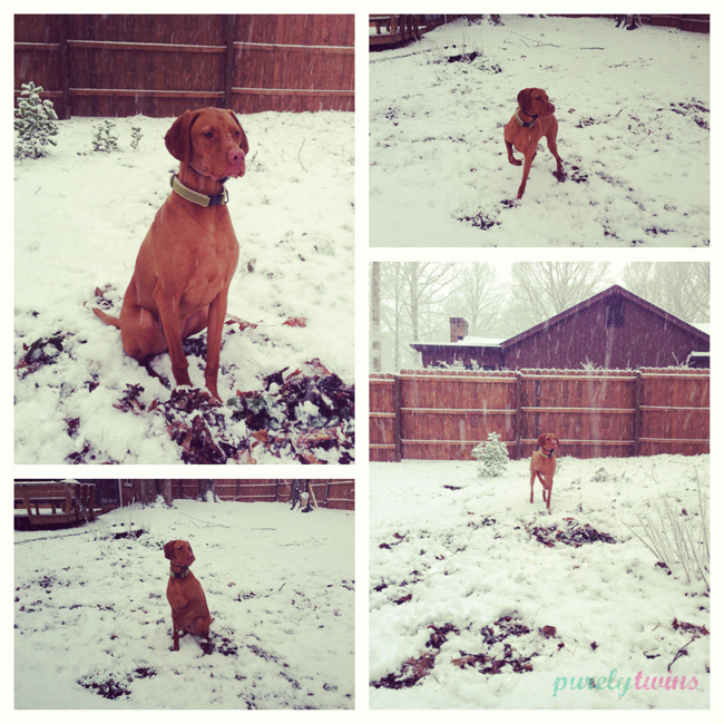 snow3a