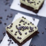 mint chocolate chip protein fudge brownie recipe {grain-free, egg-free}