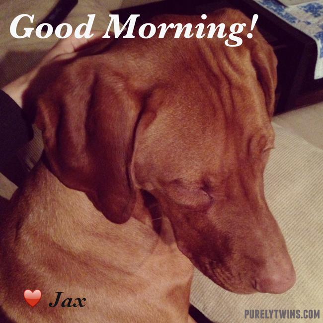 morning-jax-interestpots