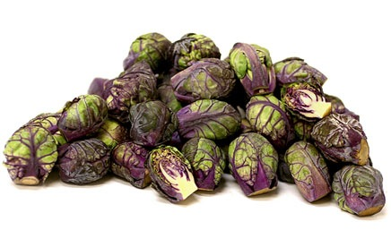 purple-sprouts