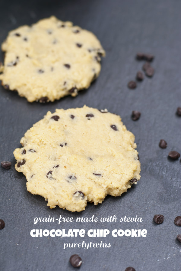 egg sugar free almond meal grain free chocolate chip cookie