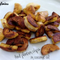 making progress + fried coconut oil plantain chips