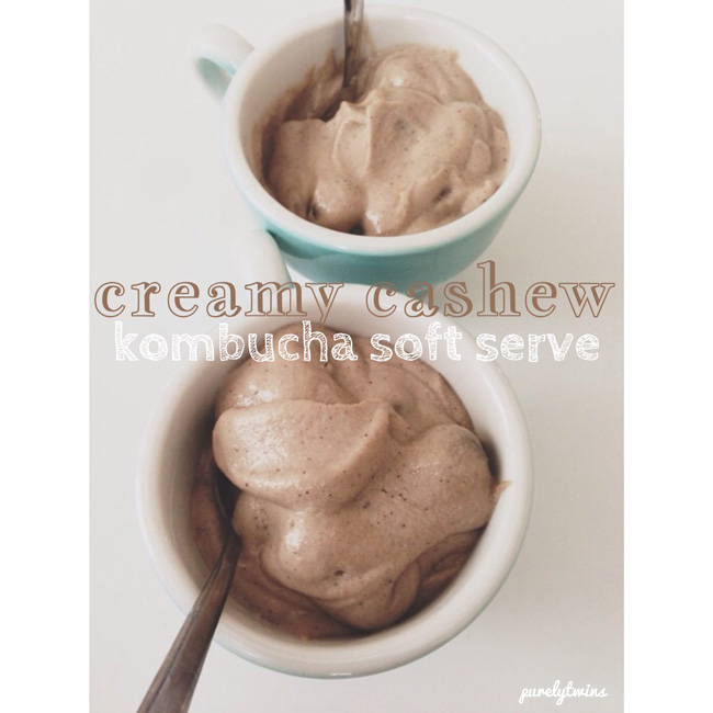 cashew kombucha ice cream copy
