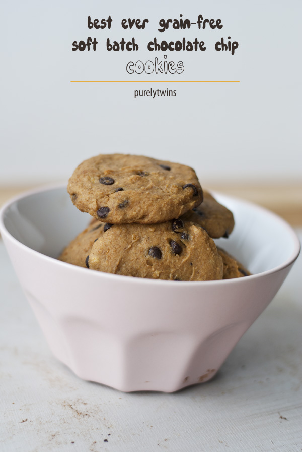 soft batch chocolate chip cookie recipe (egg-free, grain-free, gluten-free)