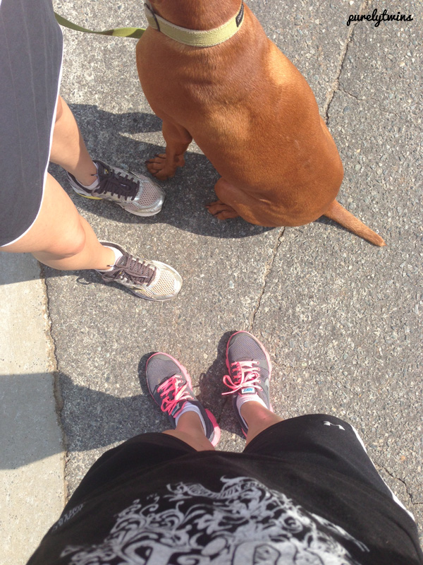 walk outside with jax