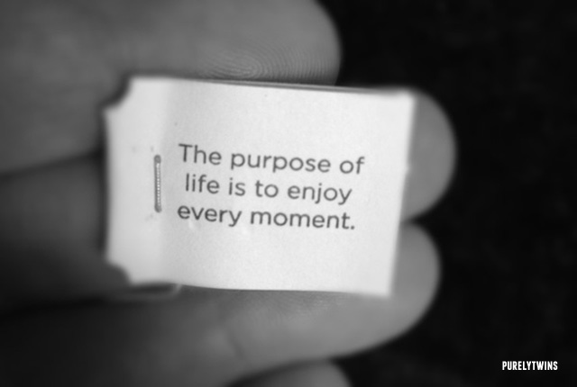 purpose of life is to enjoy it