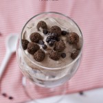 vegan cocoa puff {cookie} dough blizzard