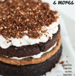 Gluten-free s'mores cookbook.