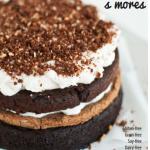 Gluten-free s'mores cookbook.