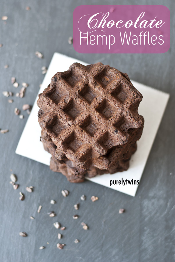 gluten free hemp chocolate waffles