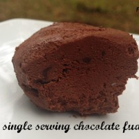under 2 minute single serving chocolate fudge recipe