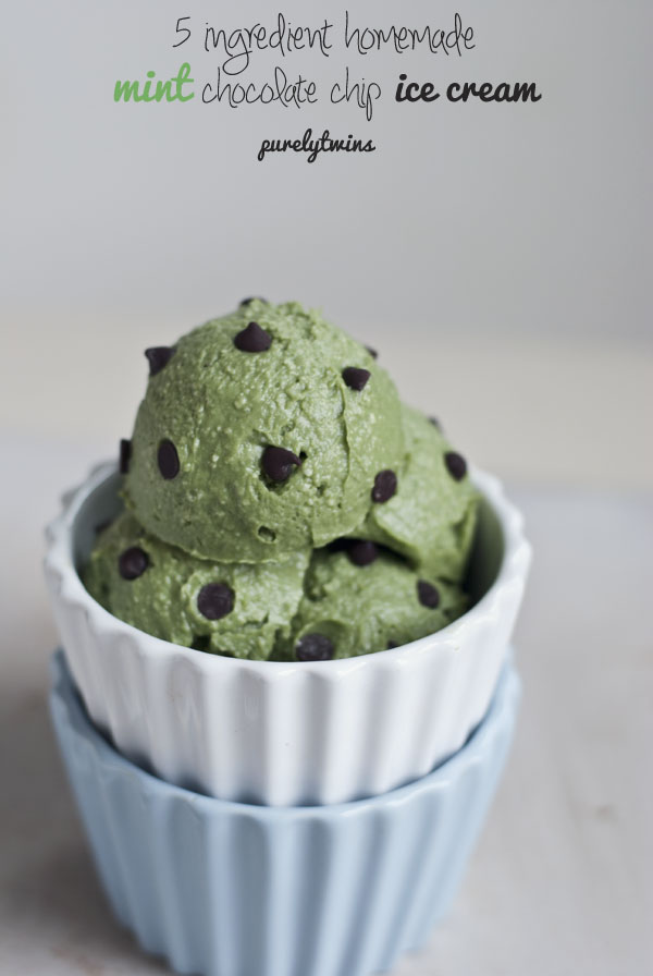 raw mint chocolate chip avocado ice cream