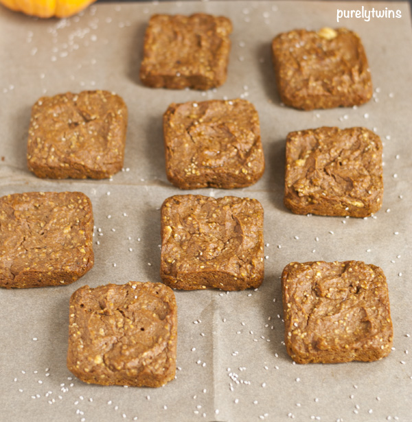 flourless pumpkin chia seed blondies