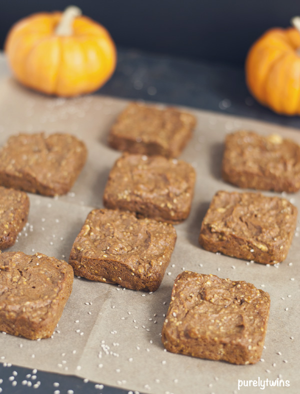 flourless pumpkin chia seed blondies2