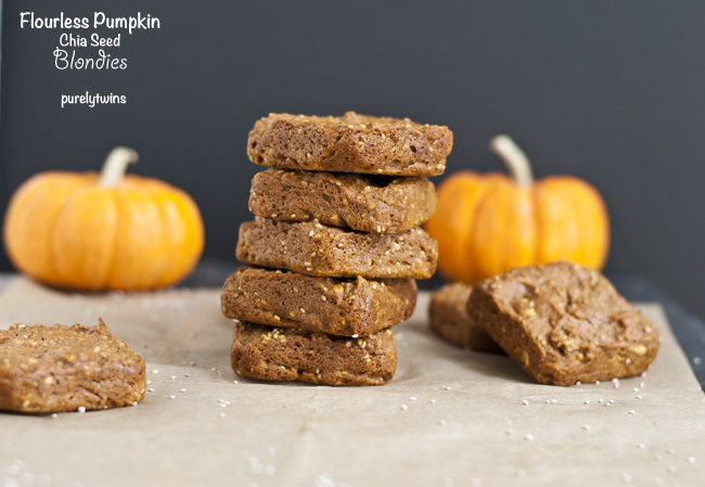flourless pumpkin chia vegan blondies