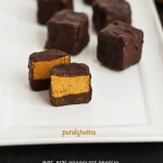 bite-size pumpkin fudge chocolate protein treats