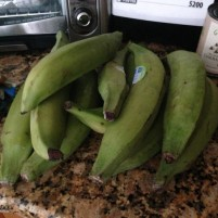 9 FAQ about plantains