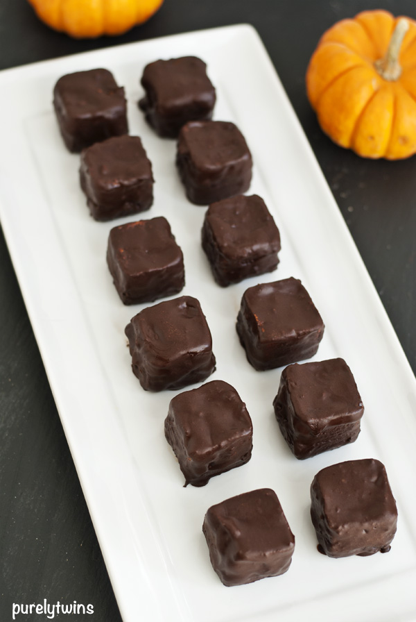 protein pumpkin chocolate treats raw