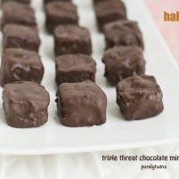 triple threat chocolate mint protein halloween treats
