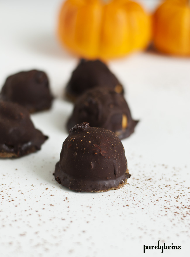 chocolate pumpkin mallmors paleo