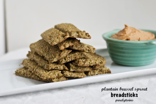 grain free paleo breadsticks