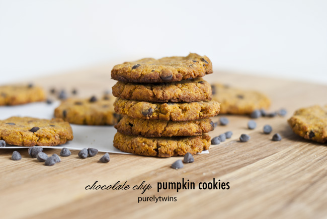 paleo pumpkin coconut flour chocolate chip cookies