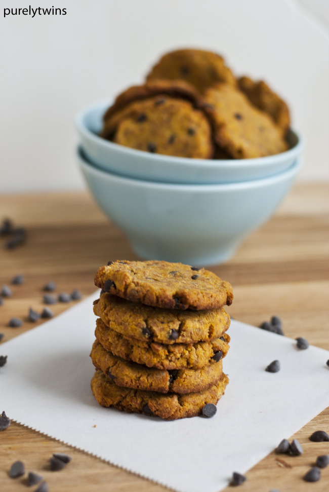pumpkin chocolate chip paleo coconut flour cookies