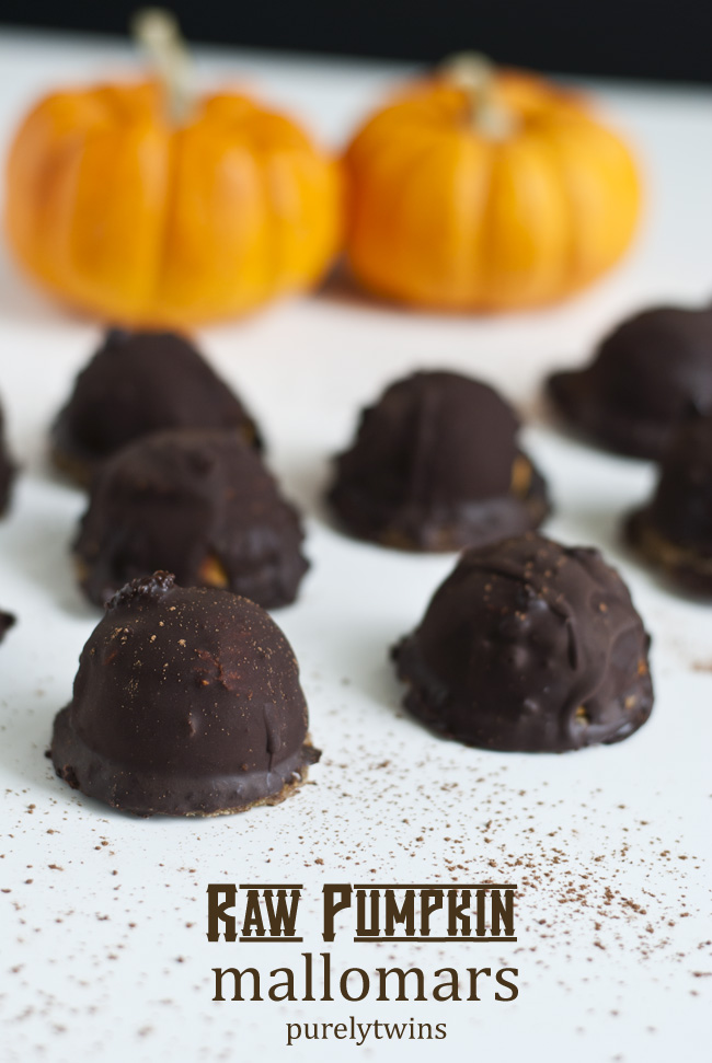 raw pumpkin mallomars