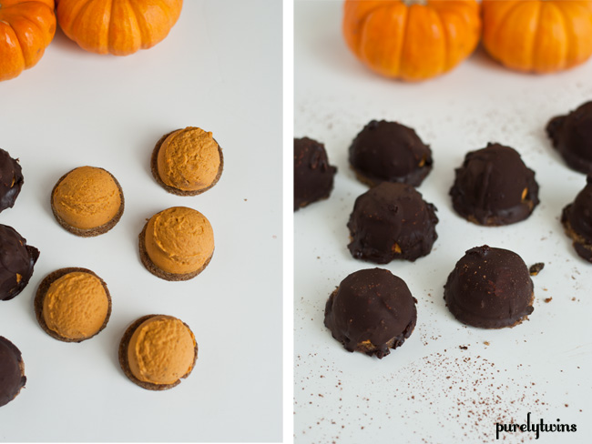 raw vegan pumpkin mallomars