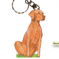 Gift ideas for Vizsla lovers