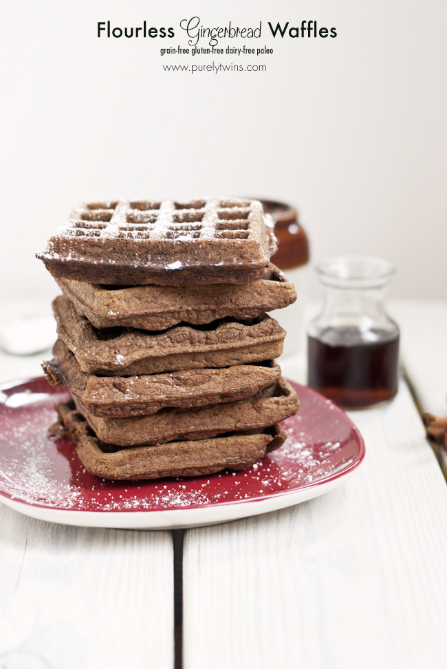 flourless grain free paleo gluten free plantain gingerbread waffles purelytwins