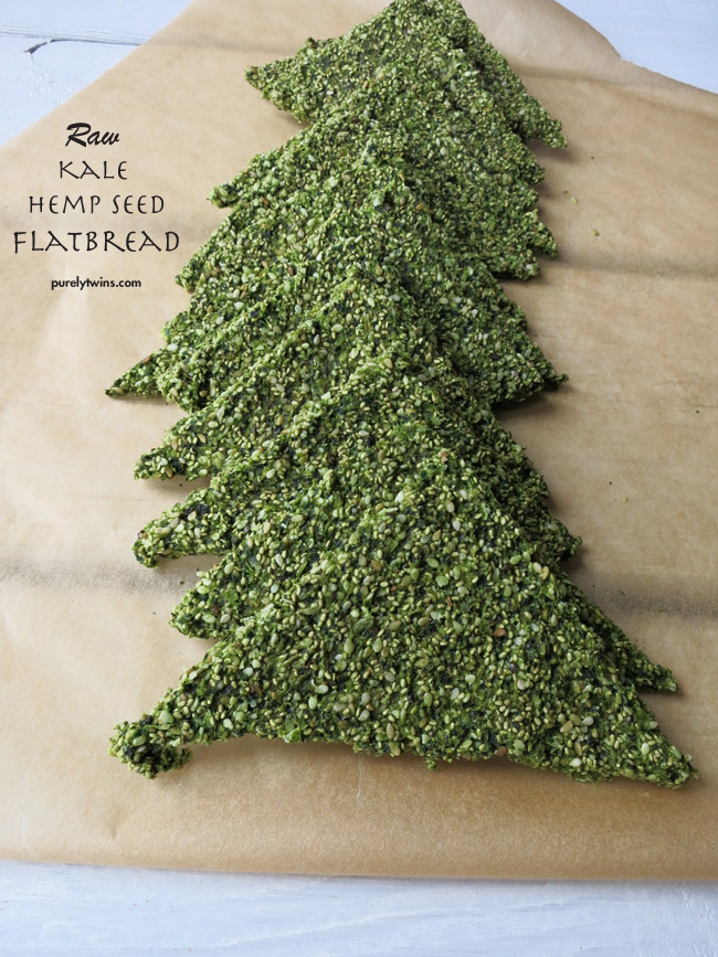 how to make raw vegan grain-free gluten-free kale hemp seed flatbread with purelytwins
