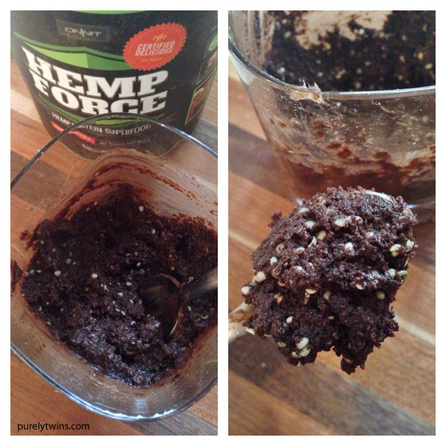 hemp force chocolate protein