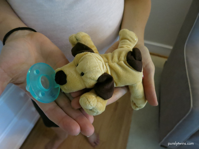 dog pacifer