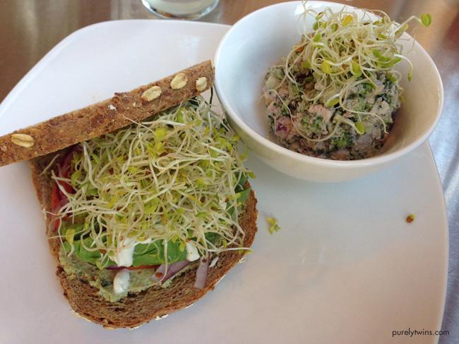 luna's raw lunch