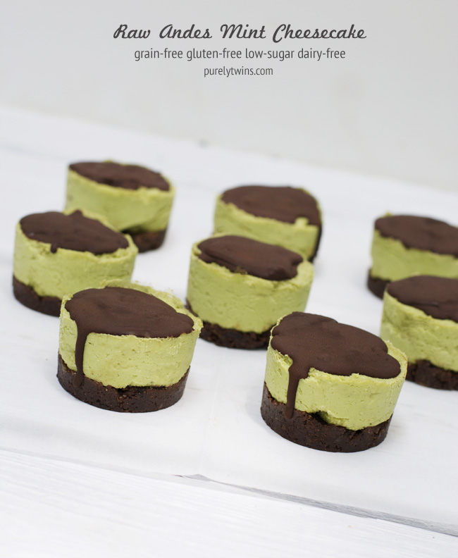 raw avocado andes cheesecake made with coconut butter and stevia