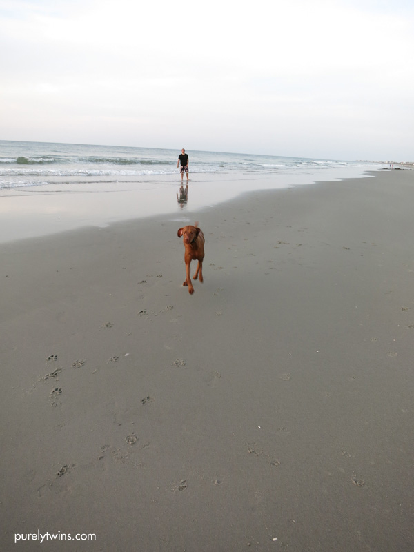 jax running sc beach purelytwins