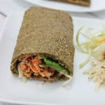5 ingredient chia seed protein egg-less wrap recipe + video tutorial