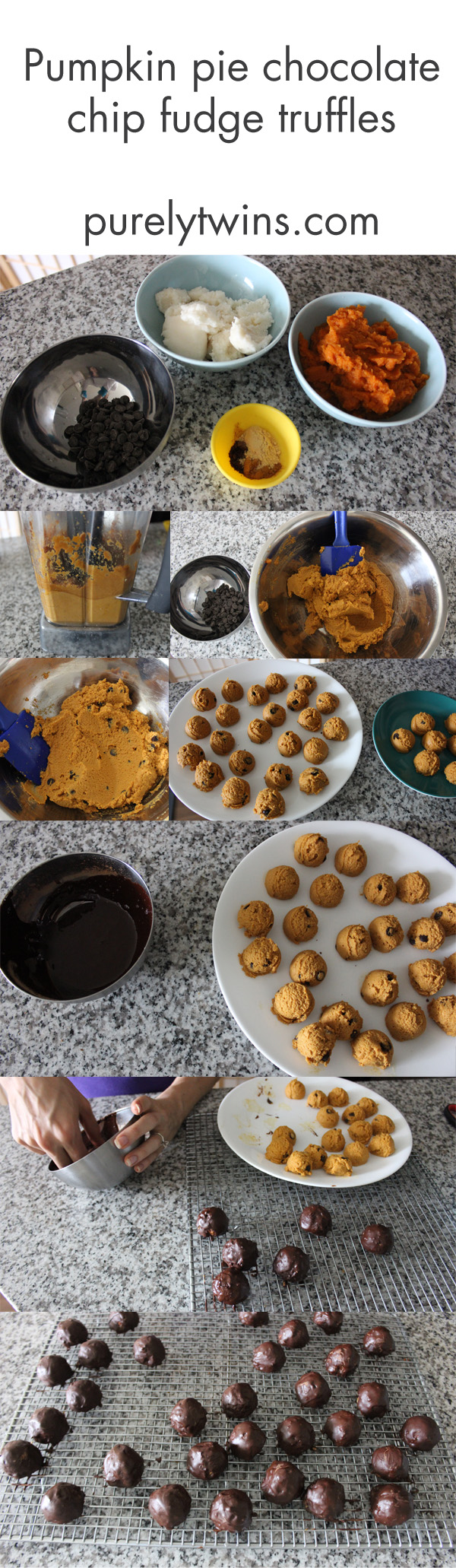 Gluten-free, vegan, low sugar pumpkin pie chocolate chip fudge truffle recipe. A fun and healthy dessert recipe to make for Halloween or fall.