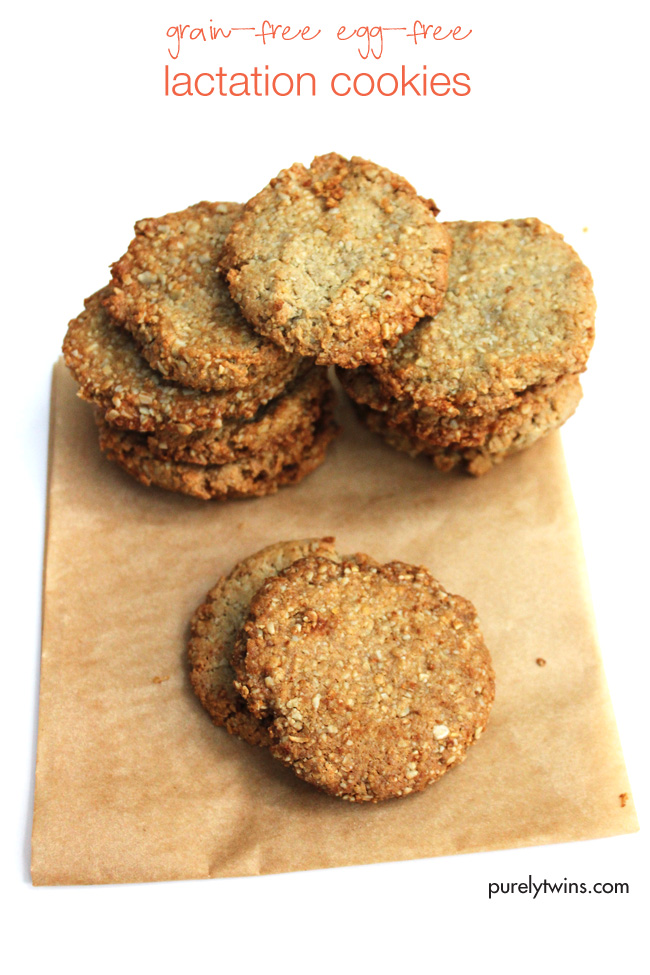 grain-free-egg-free-lactation-cookies-purelytwins