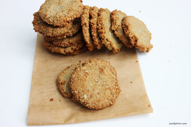 healthy-real-food-lacation-cookies-brewers-yeast-purelytwins