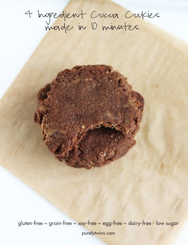 healthy-vegan-cocoa-cookies-low-sugar-grain-free