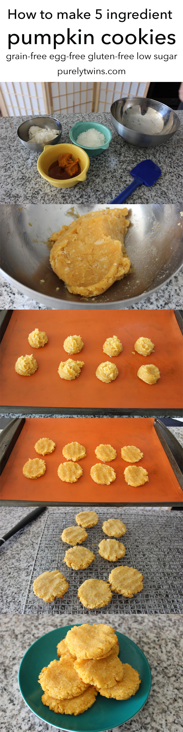 how-to-make-5-ingredient-low-sugar-egg-free-grain-free-pumpkin-cookies