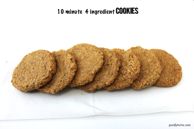 vegan-flourless-10-minute-4-ingredient-protain-cookies