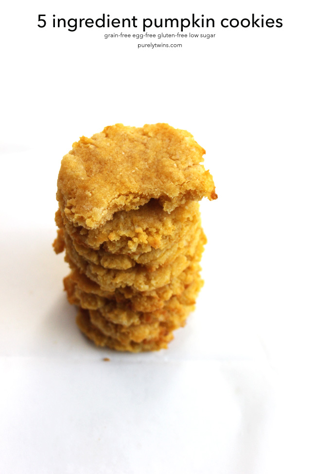 yummy-flourless-eggless-10-minute-pumpkin-coconut-cookies-purelytwins